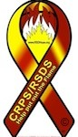 National CRPS Awareness Ribbon