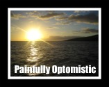 painfullyoptomistic.com